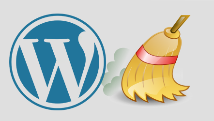 WordPress Cleanup